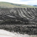 Black Muck Yukon Topsoil saved